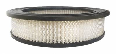 ACDelco - ACDelco Professional Air Filter A2882C