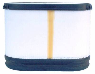 ACDelco - ACDelco Professional Air Filter A3168C