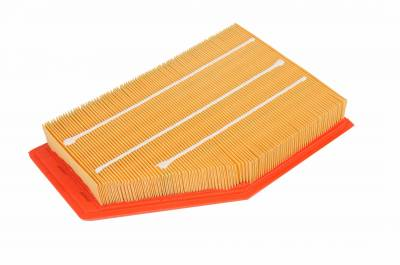 ACDelco - ACDelco Professional Air Filter A3209C