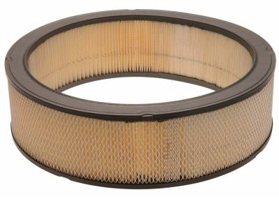 ACDelco - ACDelco Professional Durapack Air Filter A697CF