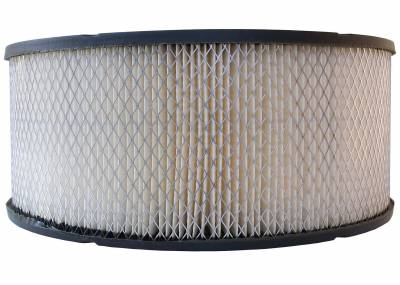 ACDelco - ACDelco Professional Durapack Air Filter A753CF