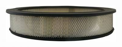 ACDelco - ACDelco Professional Air Filter A85C