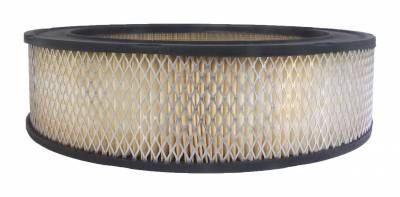 ACDelco - ACDelco Professional Air Filter A86CW