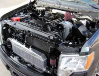 ProCharger - ProCharger 1FV311-SCI-5.0 - Stage II Intercooled System with P-1SC-1 [2011-14 F-150 5.0] - Image 2
