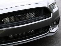 ProCharger - ProCharger 1FW212-SCI - Stage II Intercooled System with P-1SC-1 [2015-17 Mustang 5.0] - Image 3